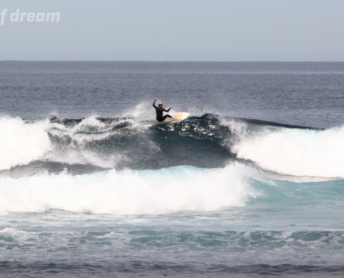 surf fuerteventura