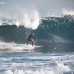 surf kemp fuerteventura